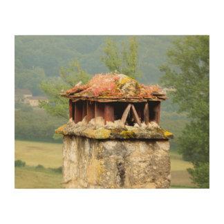 Art en bois de mur de cheminée française antique