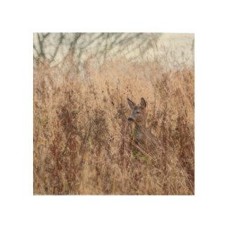 Art en bois de mur de photographie de cerfs
