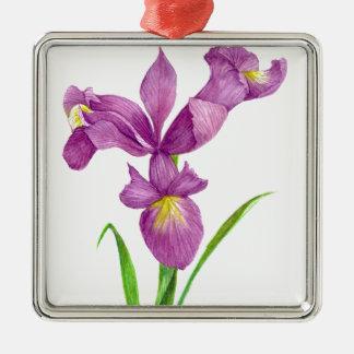 Art floral botanique d'iris pourpre ornement carré argenté