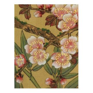 Art japonais asiatique de fleurs de cerisier vinta cartes postales