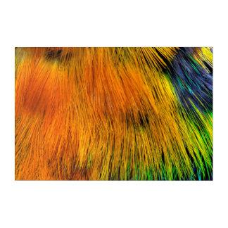 Art Mural En Acrylique Abrégé sur coloré par arc-en-ciel plume