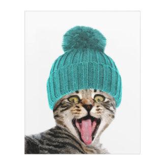 Art Mural En Acrylique Chat avec le portrait animal drôle de casquette