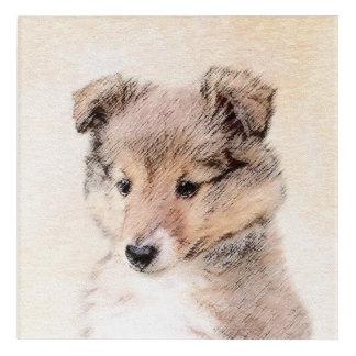 Art Mural En Acrylique Chiot de chien de berger de Shetland
