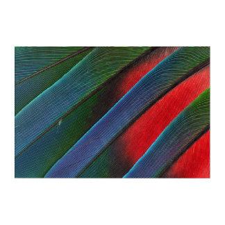 Art Mural En Acrylique Conception dirigée bleue de plume de perroquet