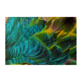 Art Mural En Acrylique Conception iridescente bleue de plume