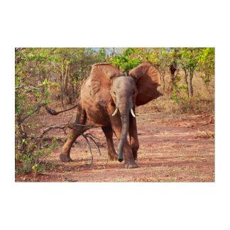 Art Mural En Acrylique Éléphant dans la pose d'avertissement