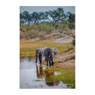 Art Mural En Acrylique Éléphants à un point d'eau