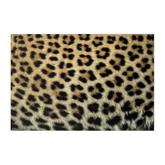 Art Mural En Acrylique Fermez-vous des taches de léopard, Afrique