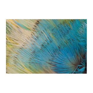 Art Mural En Acrylique Fin d'abrégé sur plume de perroquet