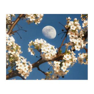 Art Mural En Acrylique La lune encadrée par un arbre fleurissant blanc