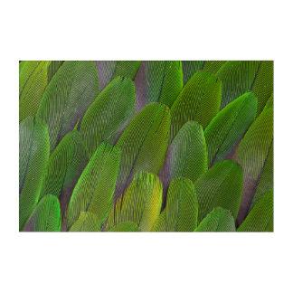 Art Mural En Acrylique Les plumes vertes de perroquet se ferment