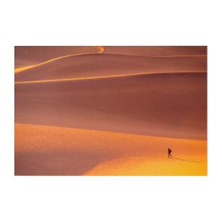 Art Mural En Acrylique Parc national de Death Valley | la Californie