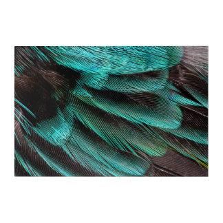 Art Mural En Acrylique Plumes bleues de couvert d'aile