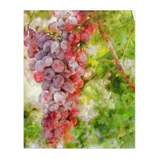 Art Mural En Acrylique Raisins de vin rouge sur la vigne