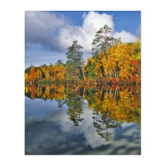 Art Mural En Acrylique Réflexions d'étang d'automne, Maine