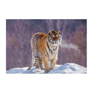 Art Mural En Acrylique Tigre sibérien dans la neige, Chine
