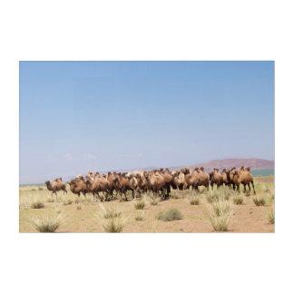 Art Mural En Acrylique Troupeau de chameaux Bactrian