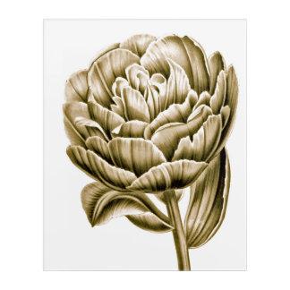 Art Mural En Acrylique Tulipe élégante