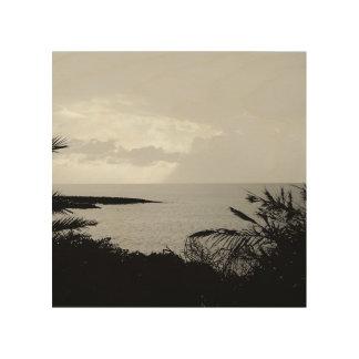 Art noir et blanc de mur de photographie de vue