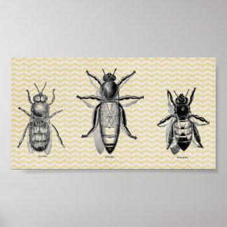 Art vintage d'abeille posters