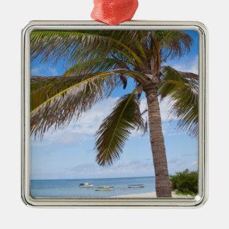 Aruba, palmier sur la plage ornement carré argenté