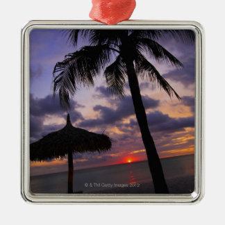 Aruba, silhouette de palmier et de palapa dessus ornement carré argenté