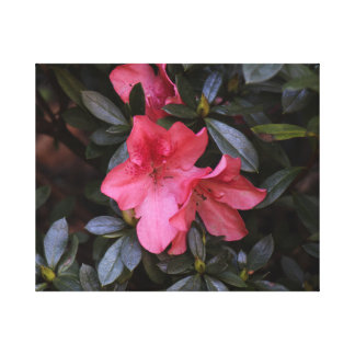 Assez en fleurs roses toile