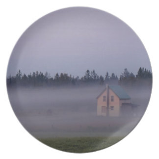 Assiette Brouillard de matin d'île, île de St Joseph