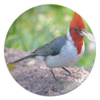 Assiette Cardinal