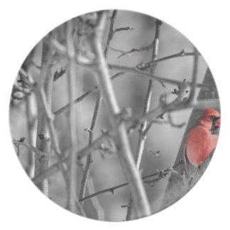 Assiette Cardinal dans un arbre