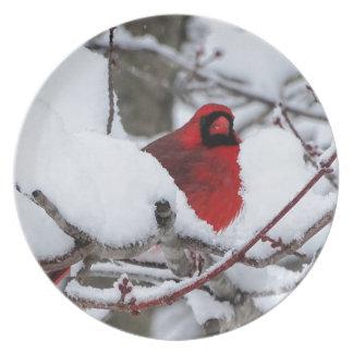 Assiette Cardinal de neige
