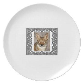 Assiette coyote dans un cadre