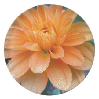 Assiette Dahlia orange