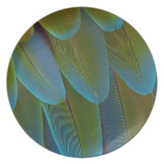 Assiette Détail de motif de plume de perroquet d'ara