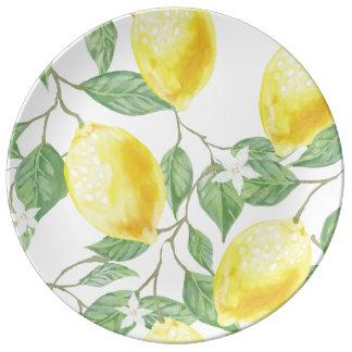 Assiette En Porcelaine Beau et lumineux plat de porcelaine avec des