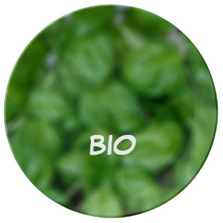 Assiette En Porcelaine Bio