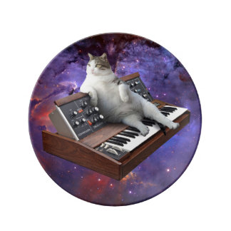 Assiette En Porcelaine chat de clavier - memes de chat - chat fou