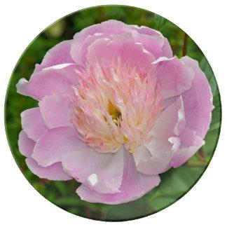 Assiette En Porcelaine Fleur rose de pivoine
