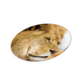 Assiette En Porcelaine Grand lion regardant loin
