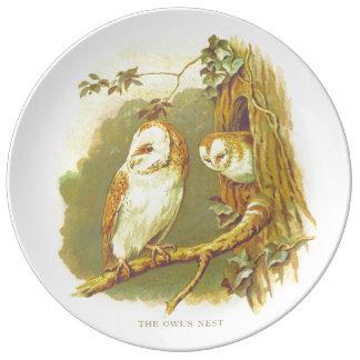 Assiette En Porcelaine Le plat de cru du nid du hibou