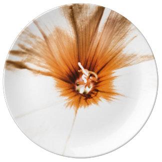 Assiette En Porcelaine Orange de ~ de liseron de FʟᴏᴡPᴏᴡ  