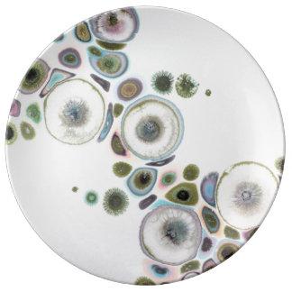 Assiette En Porcelaine Plat apaisant de Chi de zen