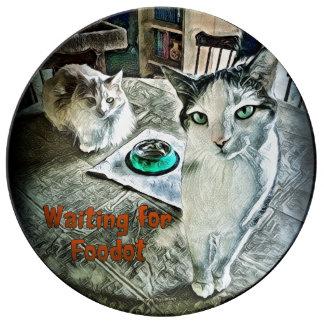 Assiette En Porcelaine Plat de attente de porcelaine de Foodot
