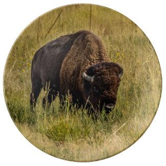 Assiette En Porcelaine Plat de bison