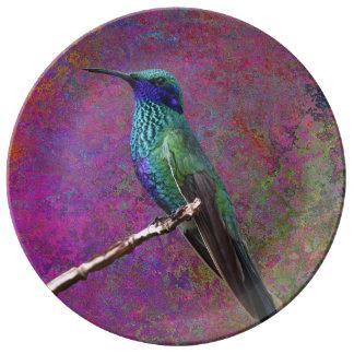 Assiette En Porcelaine plat de colibri