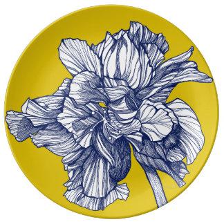 Assiette En Porcelaine Plat méditerranéen de porcelaine de ketmie hybride