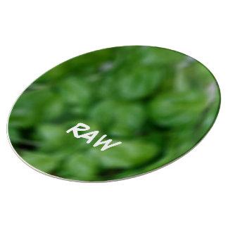Assiette En Porcelaine Raw