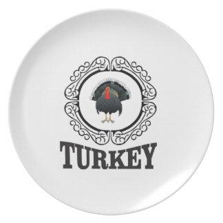 Assiette La Turquie a encadré l'art
