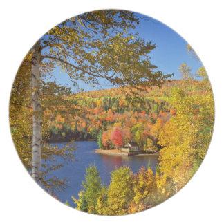 Assiette Paysage d'arbre d'automne, Maine