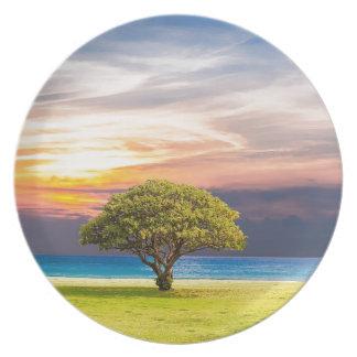 Assiette Paysage Sun d'été d'océan de nature d'herbe de mer